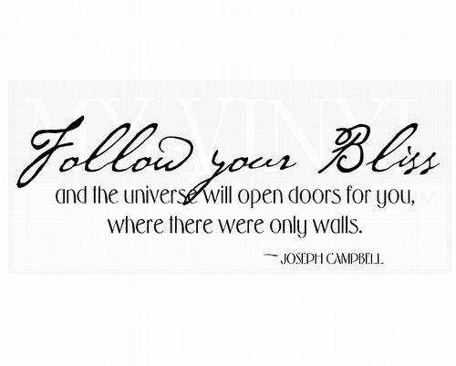 IN019 Follow your Bliss and the universe will open doors for you