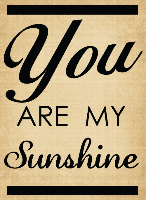 BM041 You are my sunshine vinyl lettering sticker