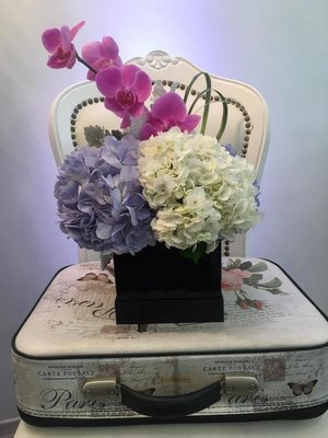 Square box orquideas y hortensias.