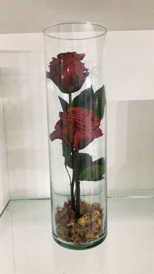 Velon con 2 rosas eternizadas
