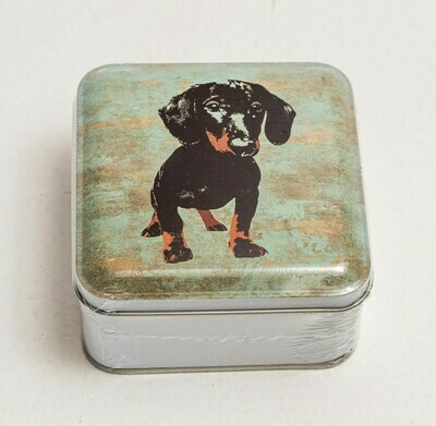 ​​Dachshund Novelty Tin -  Duckegg coloured Background