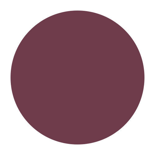 Plum - dark intense purple pink
