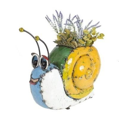 Barnyard Snail
