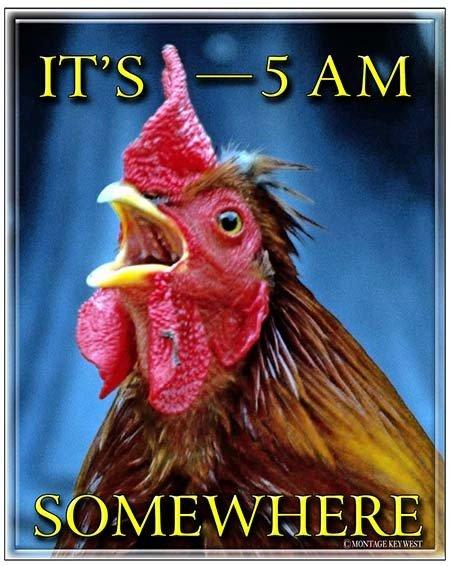 IT'S 5 AM SOMEWHERE * 8'' x 11'' 10142