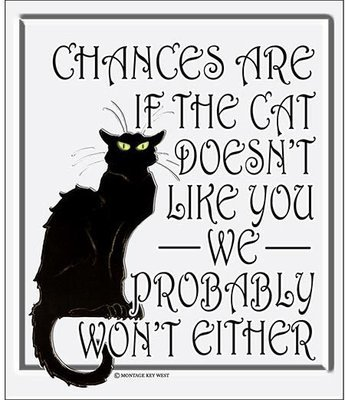 IF CAT DOES'NT LIKE YOU * 8'' x 10''