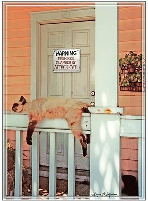 WARNING ATTACK CAT ON PORCH * 7'' x 11''