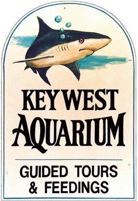 KEY WEST AQUARIUM SHARK * 7'' x 11''
