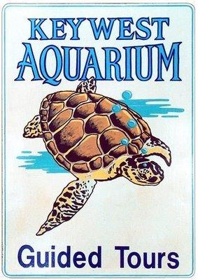 KEY WEST AQUARIUM TURTLE * 7'' x 11''