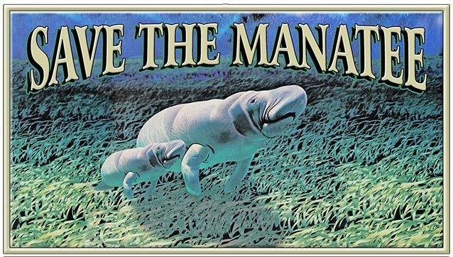SAVE THE MANATEE * 4'' x 11'' 10539
