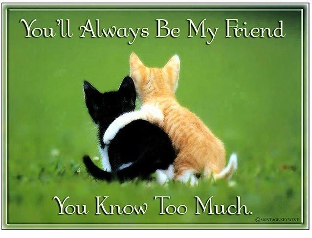 YOU'LL ALWAYS BE MY FRIEND * 8'' x 11'' 10544