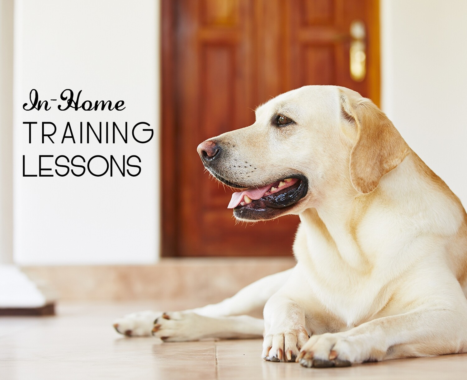 Training Lessons (In-Home)