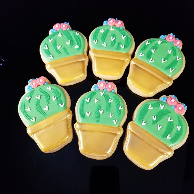 CACTUS POTTED SET (1/2 DOZEN)