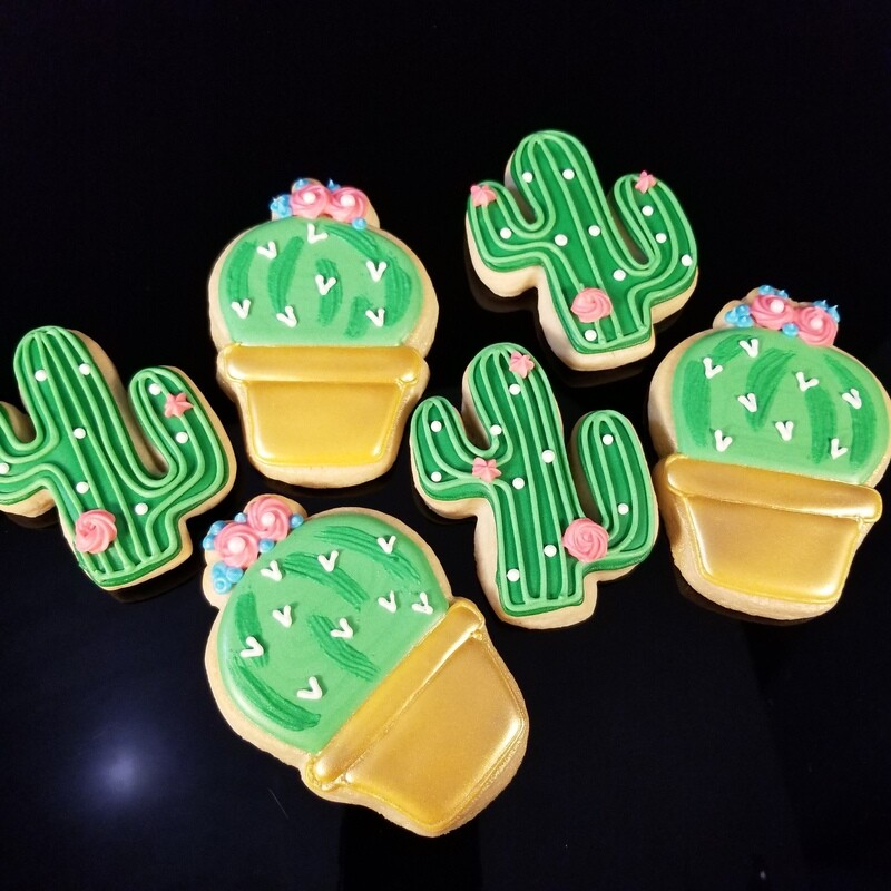 CACTUS MIXED SET (1/2 DOZEN)
