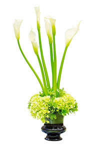Sincere Vase