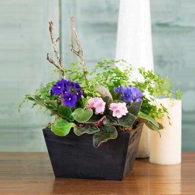 Harmony Planter