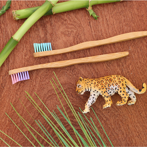 The Future is Bamboo Kids Toothbrush (2)