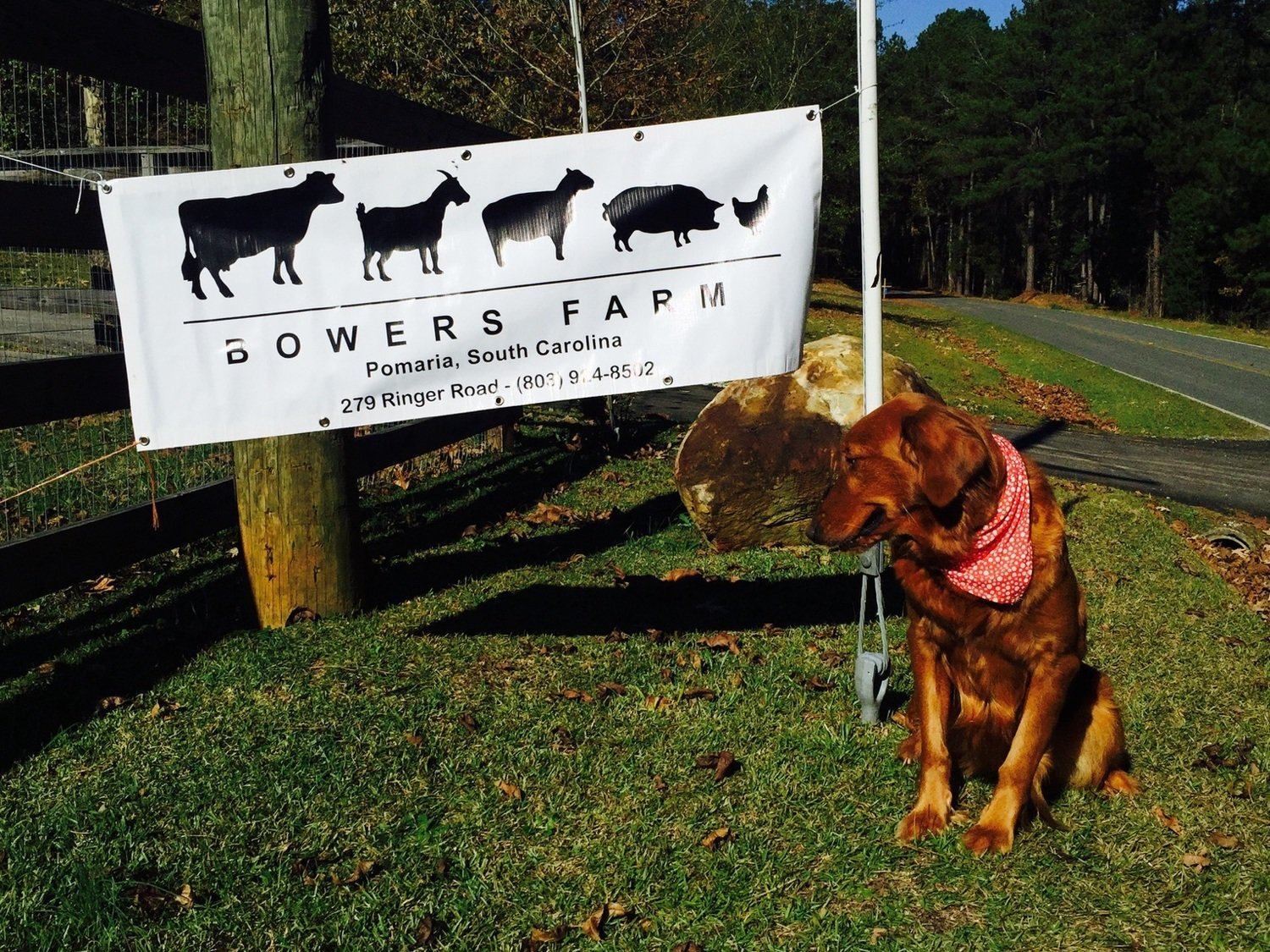 Bowers Farm Gift Certificates