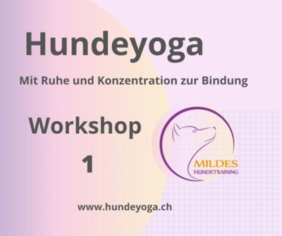 Hundeyoga 6 Wochen Einsteiger-Workshop P0007