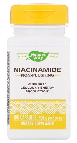Niacinamide, 500 mg, 100 Capsules - Nature's Way