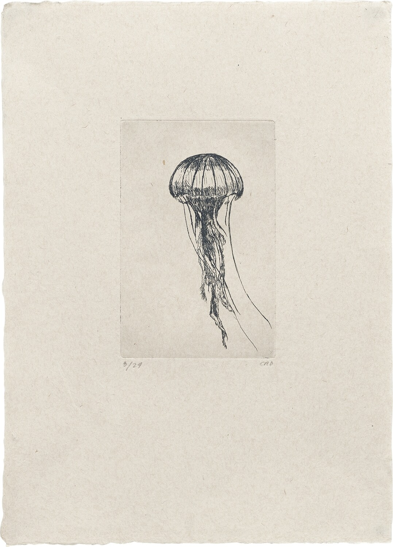 Tiny Jellyfish - Etching