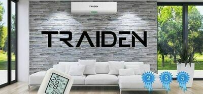 Traiden Air (AUX) 18000 BTU Mini Split System 220 Volts