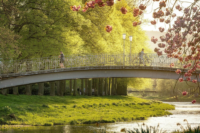 Maria-Hilf-Brücke im Frühling - Leinwand
