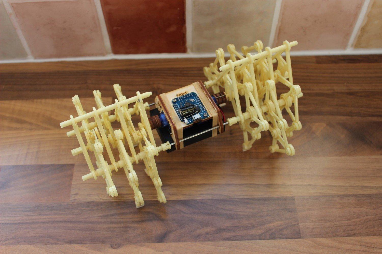 Remote Control Strandbeest kits