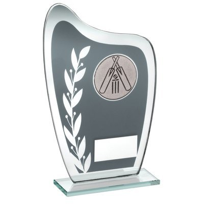 GREY/SILVER GLASS PLAQUE WITH CRICKET INSERT TROPHY