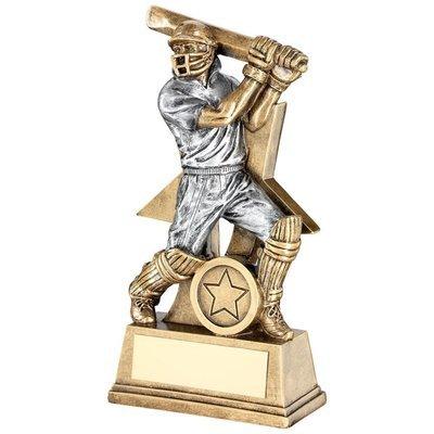 Male Batsman Award