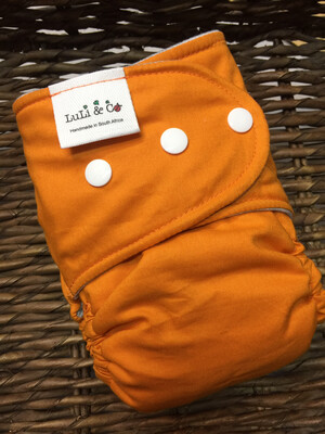 Snap In One-Burnt Orange (Newborn)