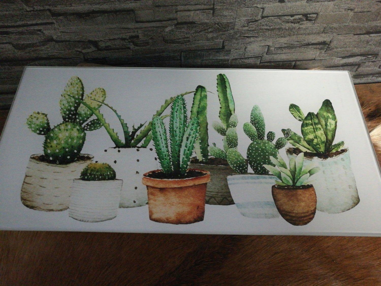 Glazenlijst cactussen