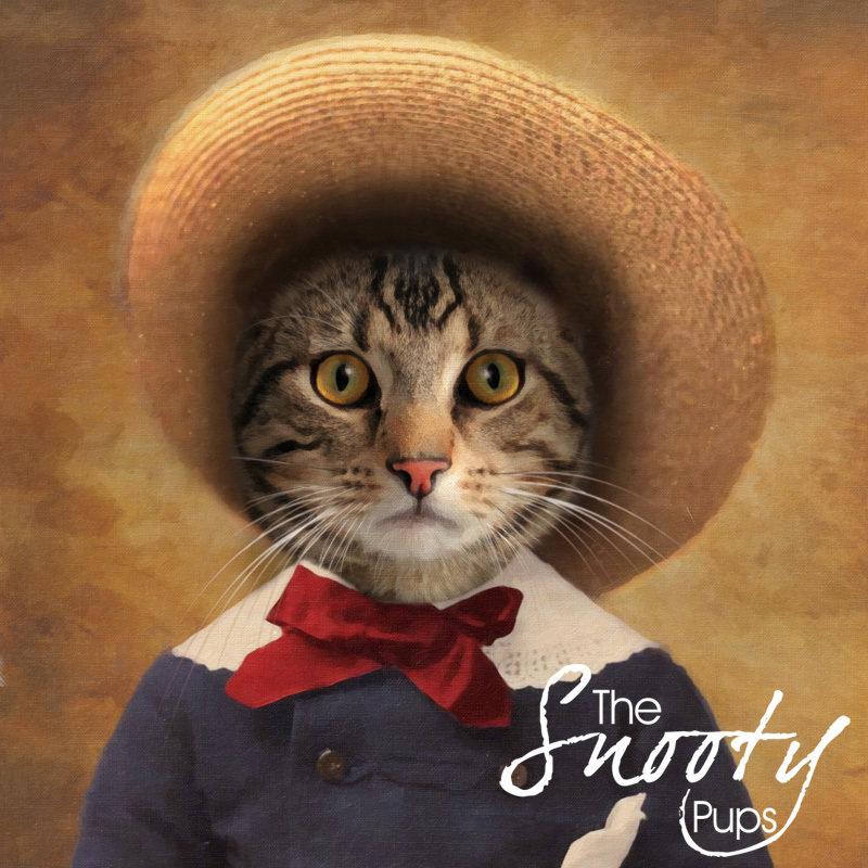 Custom Cat Portrait From Photo - Peasant