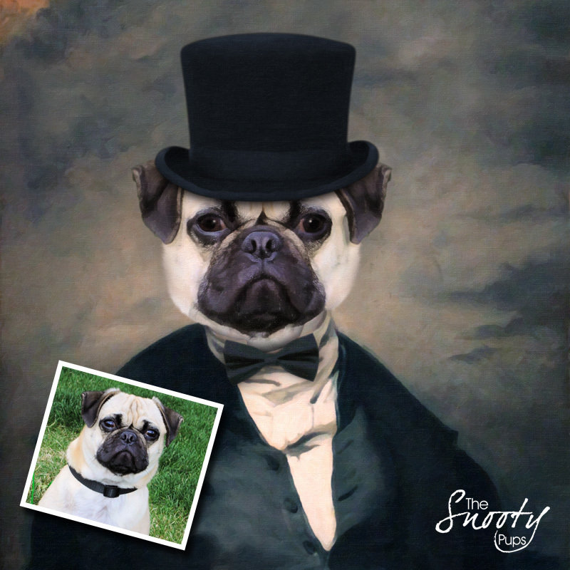Dog Portrait - Mr Stogy