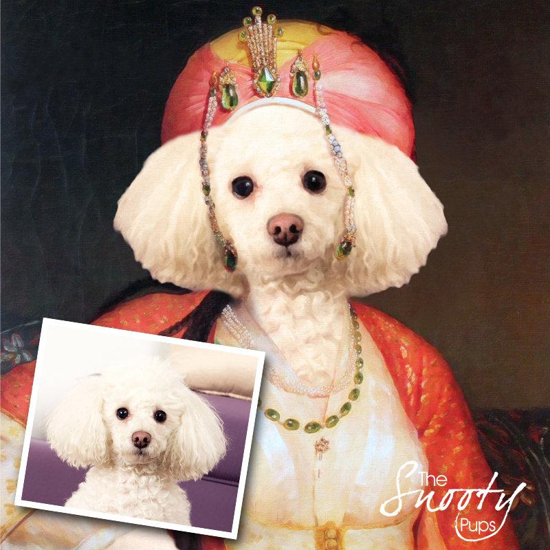 Dog Portrait - Mrs Bobbles