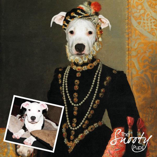 Dog Portrait - Miss Roxy