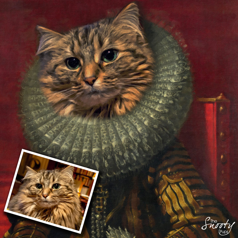 Custom Cat Portrait - Victorian