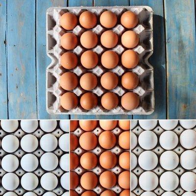 Huevos de Campo Saludables