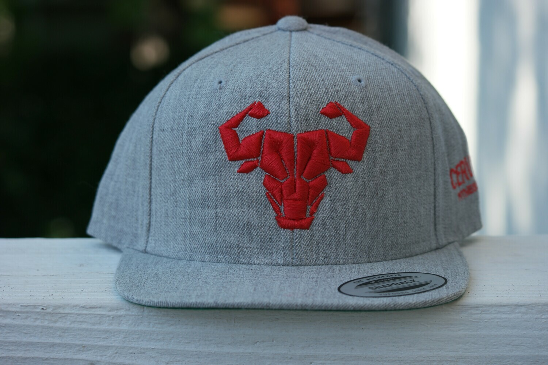Cerus Red Snapback Hat