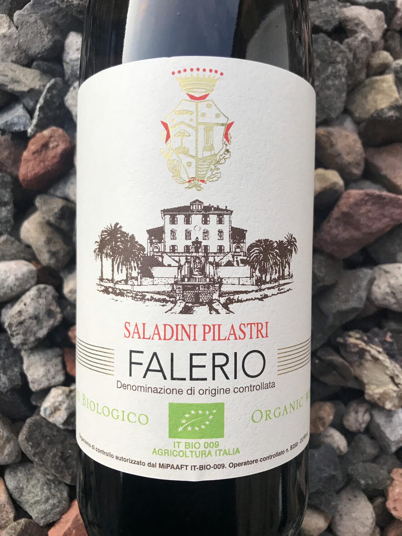 Falerio, Saladini Pilastri DOC 2018