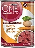 Purina ONE Tender Cuts in Gravy Beef, 13-Ounce (Pack of 12) (12/19) (A.K5)