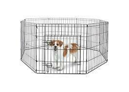 Ava's Pet Solutions 24