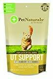 UT Support Chews with Cranberry and D-Mannose for All Cats - 60 Chews (2.65 oz) (2/19) (T.F2)