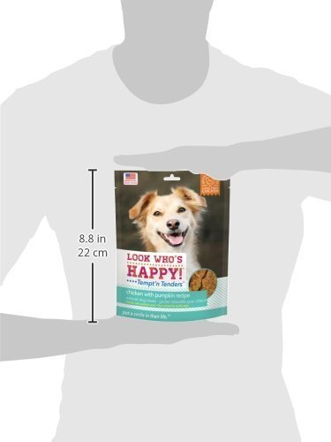 Look Who's Happy! Tempt'n Tenders Chicken & Pumpkin (4 Oz) (11/18) (T.D8/DT)