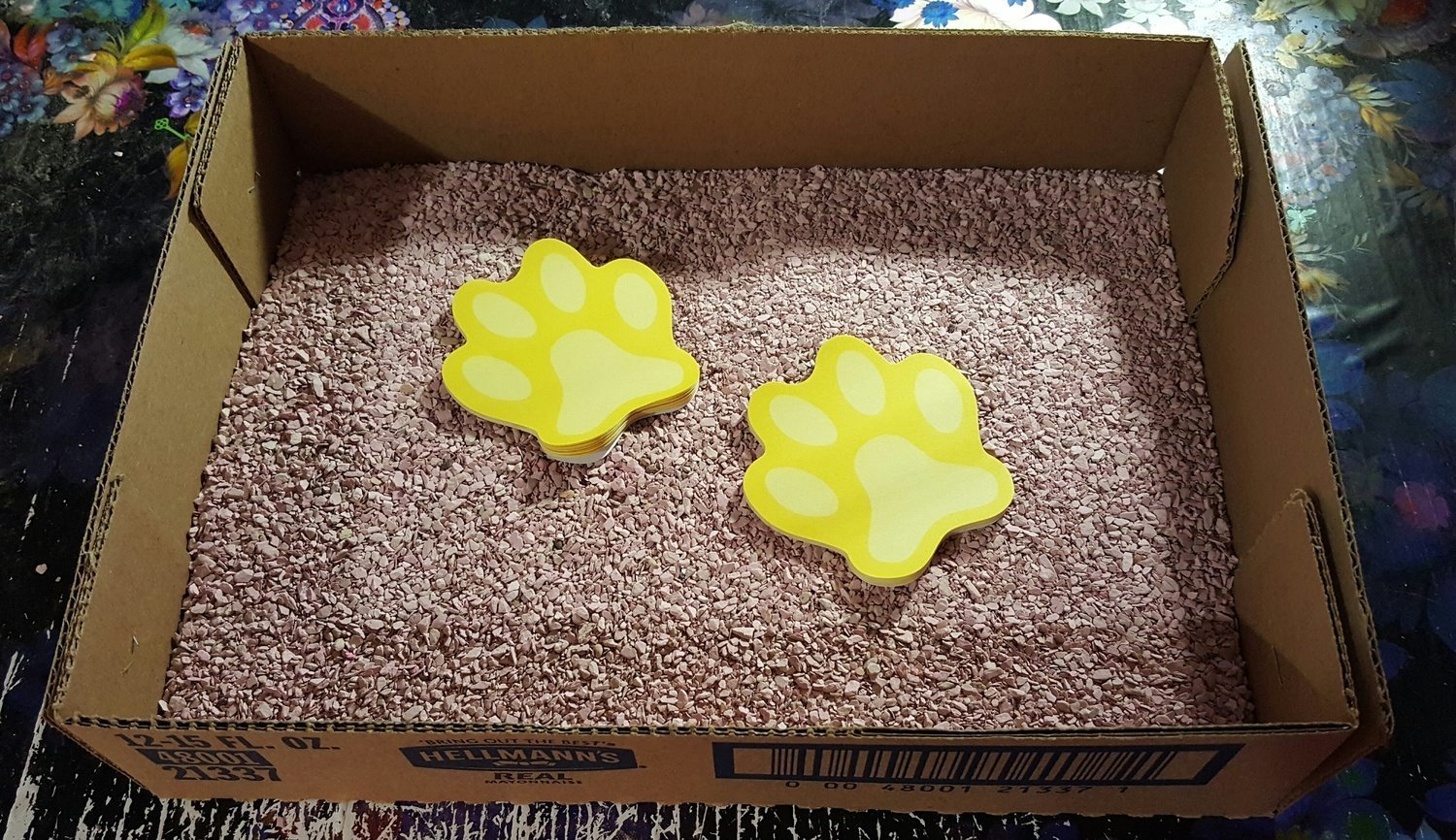 **CLOSEOUT - SUPER SALE** 15 FUR $1.00 Disposable Cardboard Litter Boxes **Shipped flat and corners will need to be glued or stapled** (B)