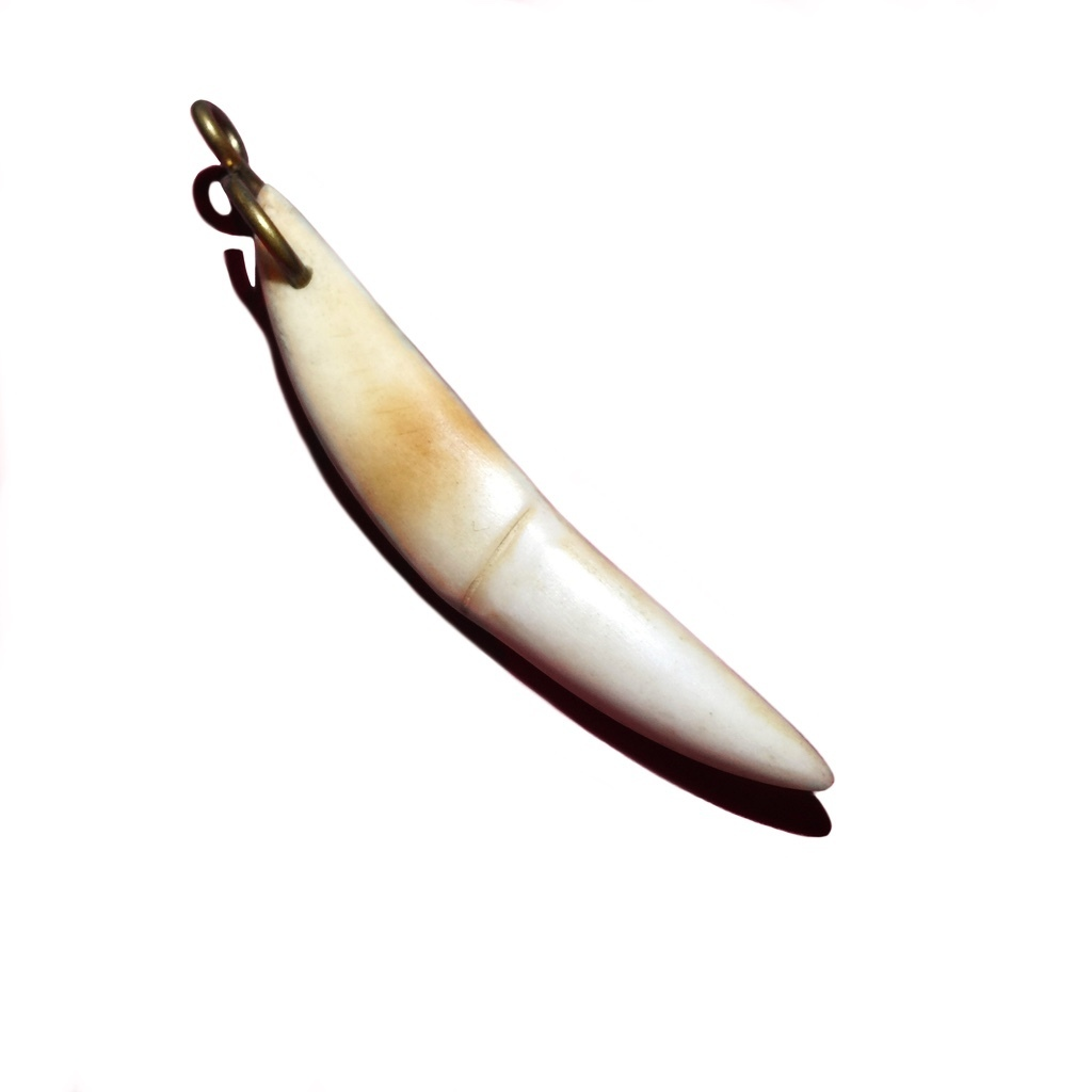 Genuine Tiger Tooth Amulet