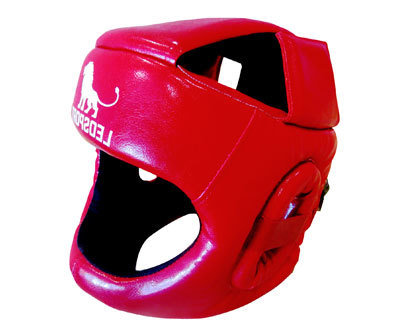 Шлем Expert с защитой верха головы и ушной раковиной