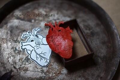Нож для вырубки Анатомическое сердце, 3,5х5см, Scrapfriend