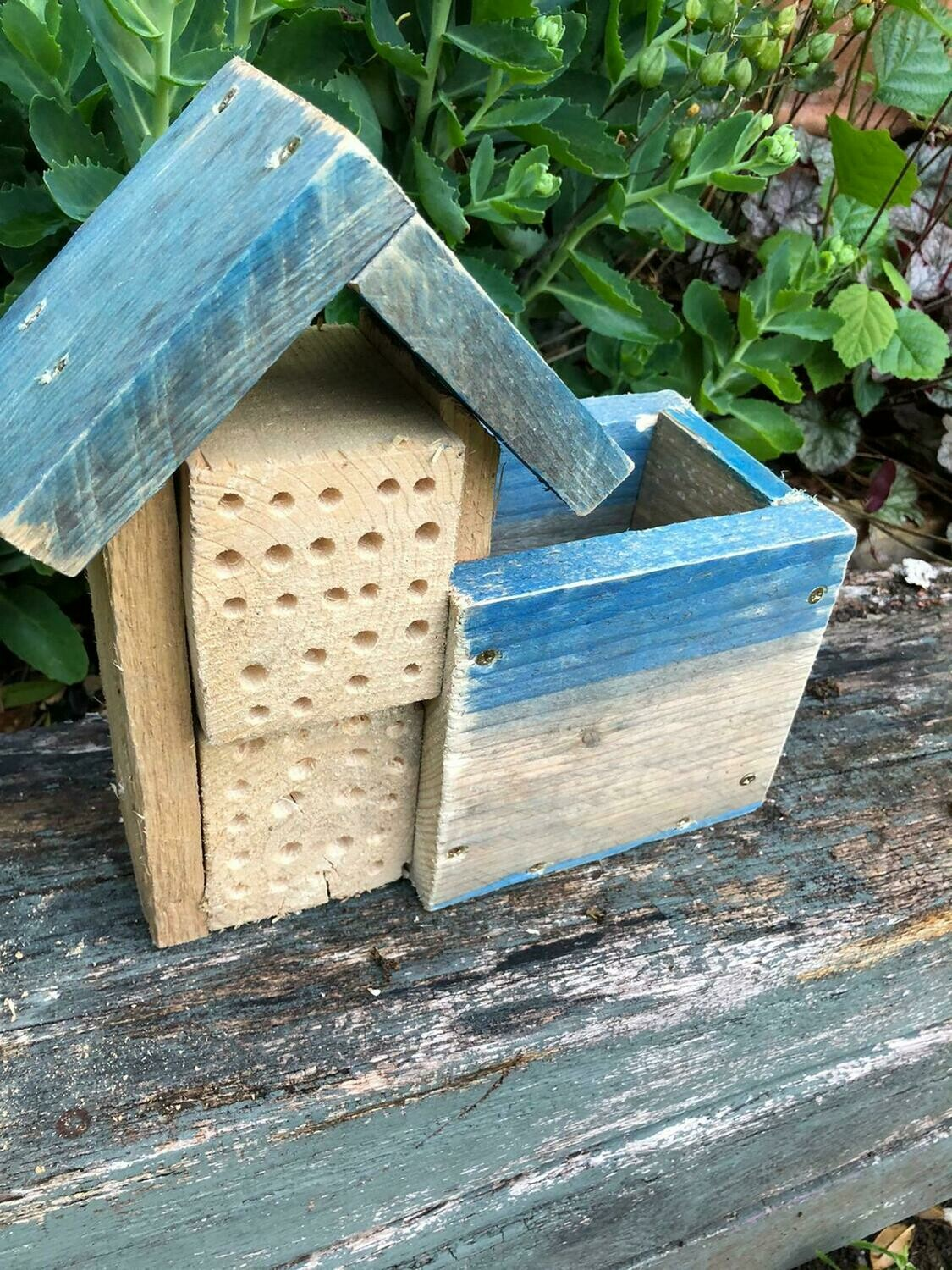 Handmade bee hotel with built in planter and wildflower seeds