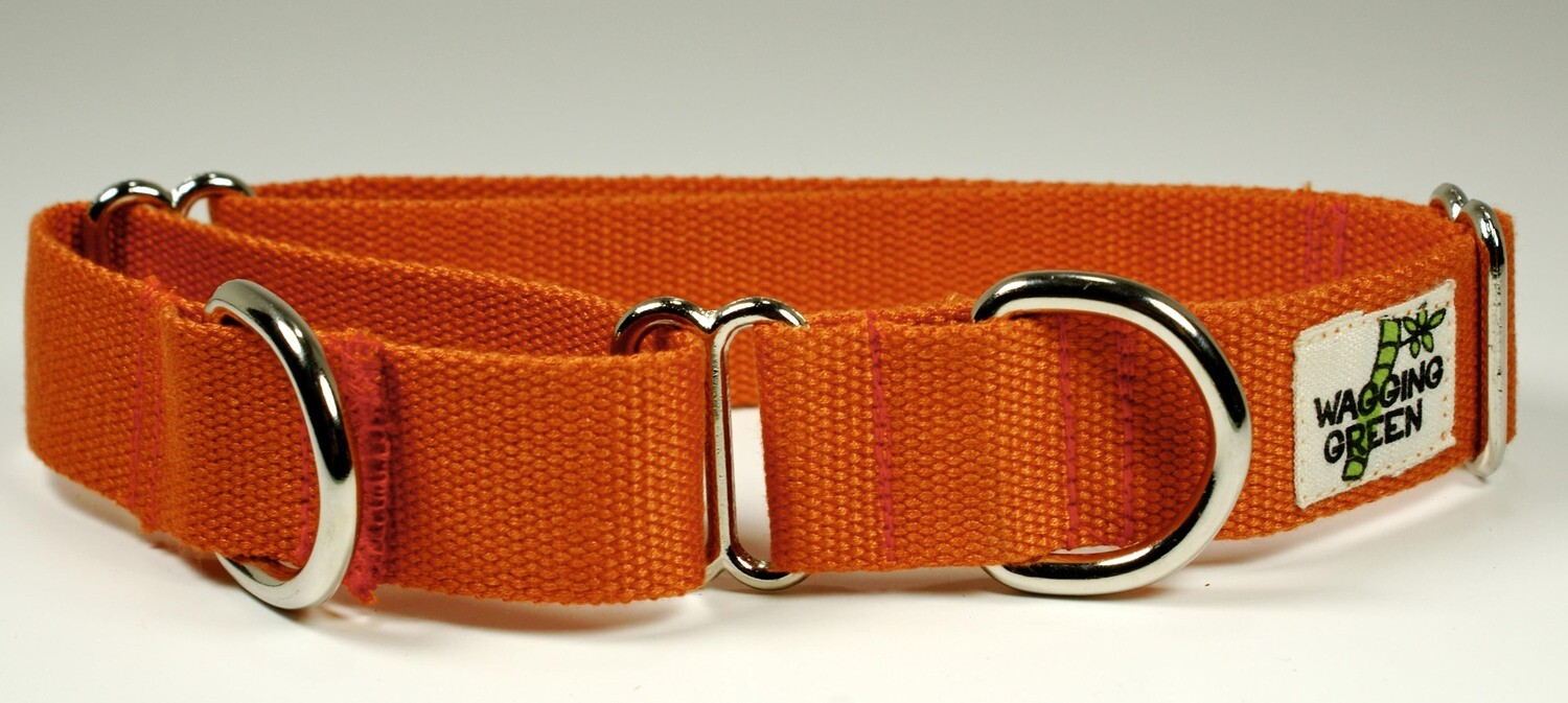 Eco Friendly Bamboo Single Layer Martingale Dog Collar - Falling Leaves