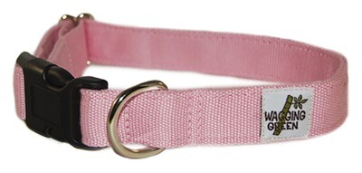 Eco Friendly Bamboo Double Layer Dog Collar - Seashell